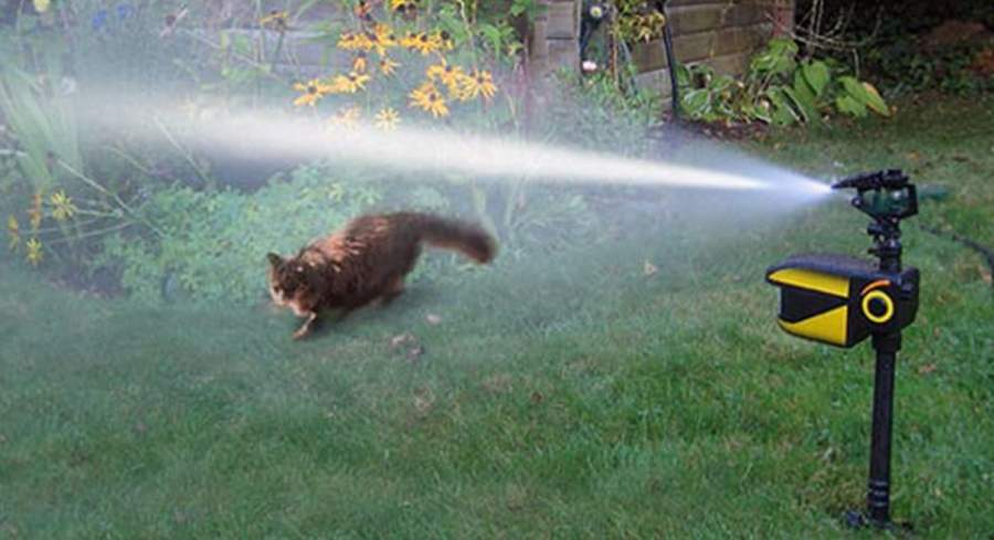 Automatic Motion Activated Sprinklers