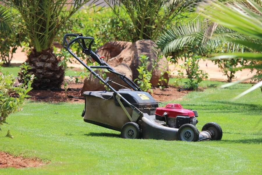 Best Electric Lawn Mower 2020.Best Cordless Electric Lawn Mowers