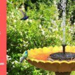 Best Solar Powered Bird Baths Fountains