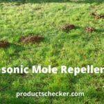 Do Ultrasonic Mole Repellers Work?