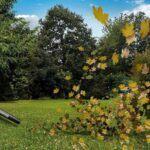 Handheld Leaf Blowers Sale