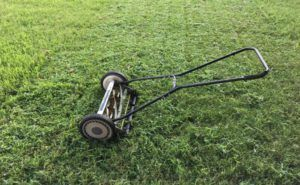 Best Manual Reel Lawn Mowers